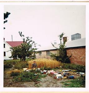 Jag håller på att tröska i min bondgård ca 1967-68
