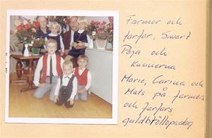 Kusiner + farmor och farfar på deras guldbröllop 1966 001