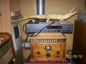 Alligator från början av 1950-talet. NAD CD-spelare. STERN & STERN. Typ: Conserton V30. från 1929.100_9707
