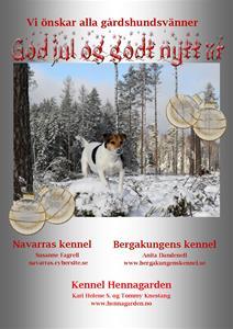 Juleannonse_Sverige_2016