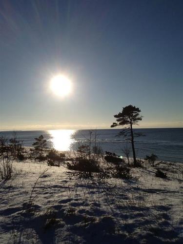 Gotland är otroligt vackert även på vintern