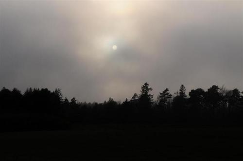 dimman drar fram