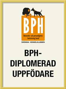 bph-diplomerad-uppfodare