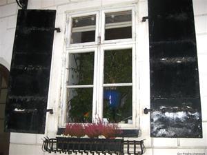 gamla sfönster