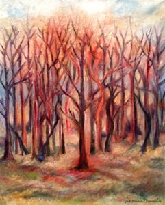 Skog i rött.