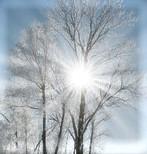 sol vinter