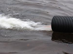 fiskutsättning lilldigerl. 2014-1020 139