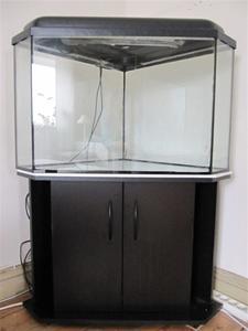 Akvarie
