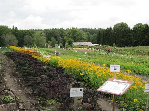 Ulriksdals trädgårdsbutik