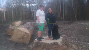 Maria, Emil och Loke på stubben av ett nersågat träd på Almungsvägen, 2015 04 23. DSC_0001