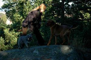 Mikis leker med Maja och Harry
