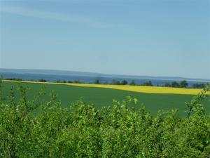 Pilgrimsritt maj 2012 045