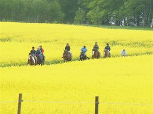 Pilgrimsritt maj 2013