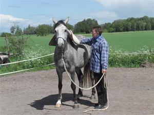 Horsemanship kurs
