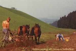 Stefano working with horses