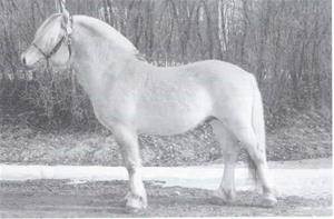 Lysluggen 194