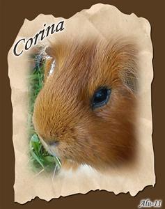 Corina död 2011-09-20