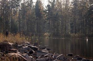 Höstfiske vid Brotorpet, Fotograf: Daniel Nilsson