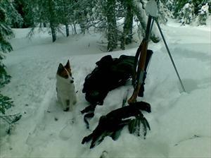 På jakt i Ormsjö