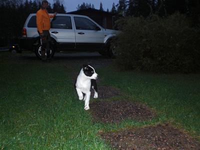 Azzar kommer hem - 23 sept 2011