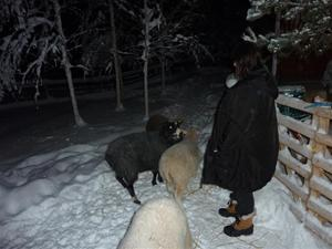Mia anländer 14 januari 2011