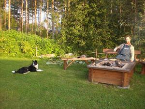 Sommarkväll vid grillen
