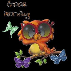 good-morning-224
