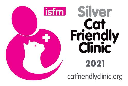 CFC Silver logo for clinics2021