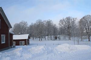 vinterbild-4
