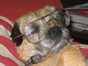 Danny med glasögon