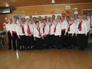Seniordansarna 2010