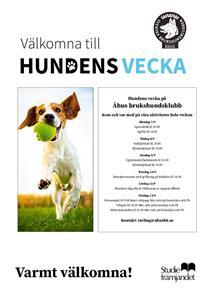 thumbnail_Hundens vecka sep-2020