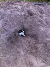 max gräver