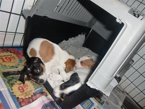 Här kan man också sova:-)