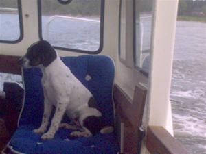 Diesel på båttur!