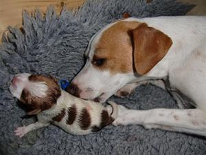 Godis med sin först födda:-)