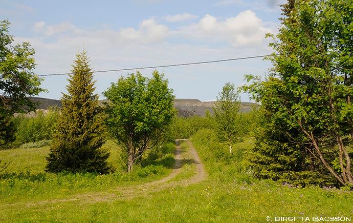 Kiruna-bilder-014