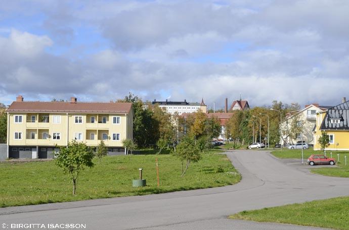 Kirunabilder-038