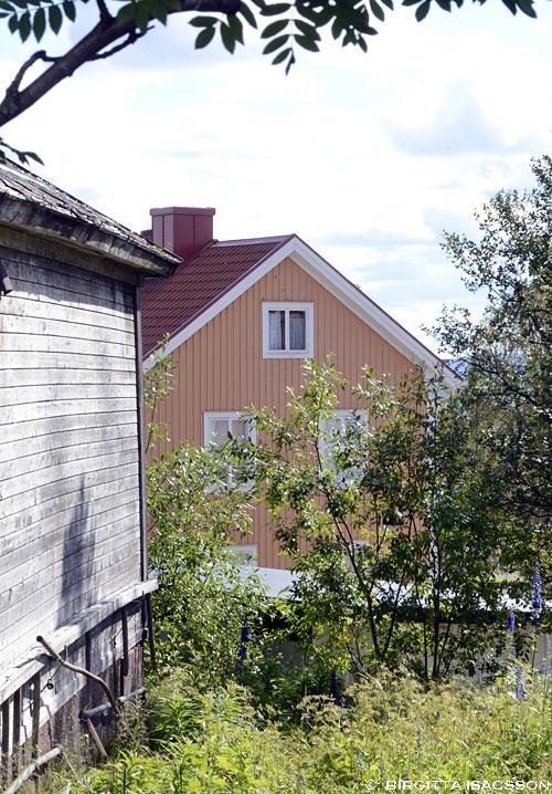 Kirunabilder-079