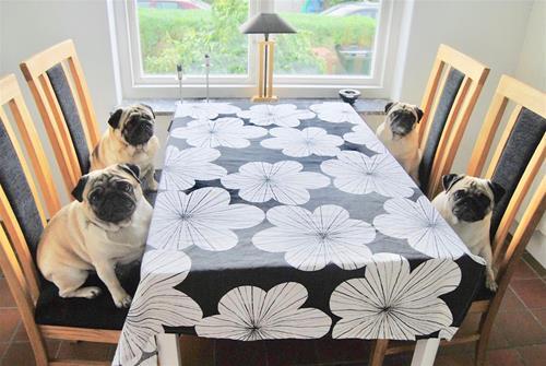 Mopsar matbord