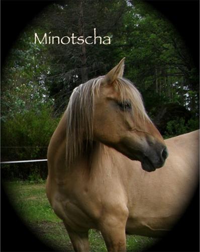 Minna3