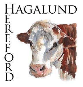 Hagalund Hereford