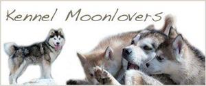 kennel moonlovers
