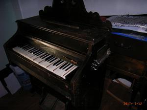 Orgel,orginell.  Självspelande!