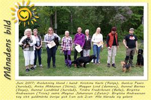 Månadens bild - Juni 2017 - Avslutning Hund i hand