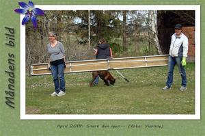 Månadens bild - April 2018 - Snart dax igen...