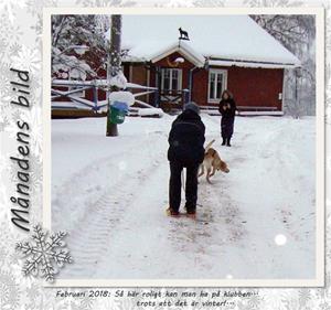 Månadens bild - Februari 2018 - Så här roligt kan man ha på klubben... trots att det är vinter!