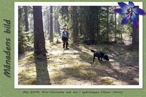 Månadens bild - Maj 2019 - Ann-Christine och Izo i spårskogen.