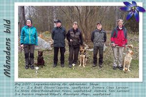Månadens bild - Maj 2017 - Lägreklasstävling för spårhundar