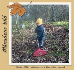 Månadens bild - Oktober 2019 - Städbestyr i Skoga